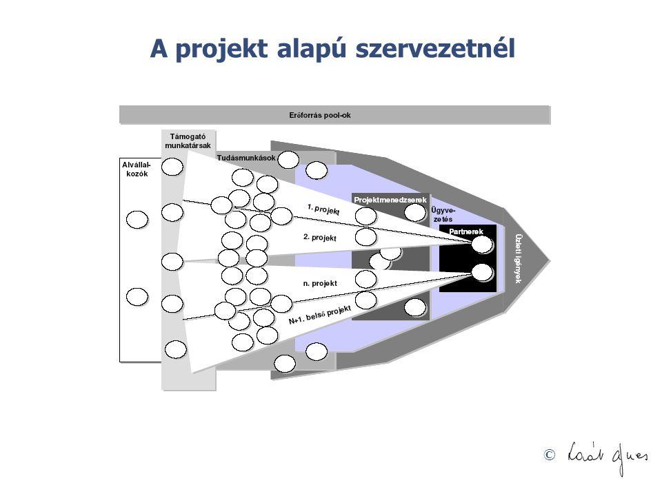 A projekt alapú szervezetnél
