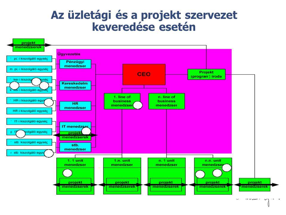 Az üzletági és a projekt szervezet keveredése esetén