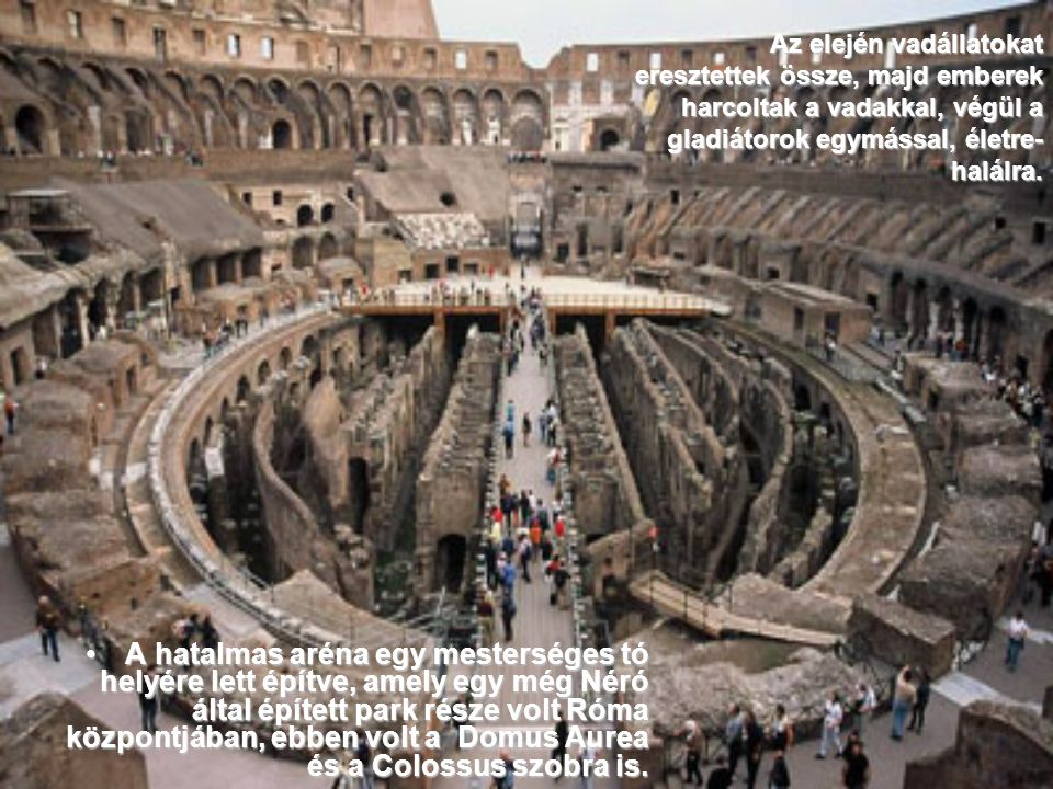 Az elején vadállatokat eresztettek össze, majd emberek harcoltak a vadakkal, végül a gladiátorok egymással, életre-halálra.