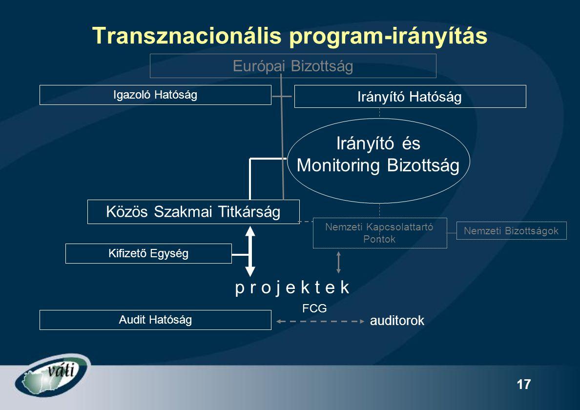 Transznacionális program-irányítás
