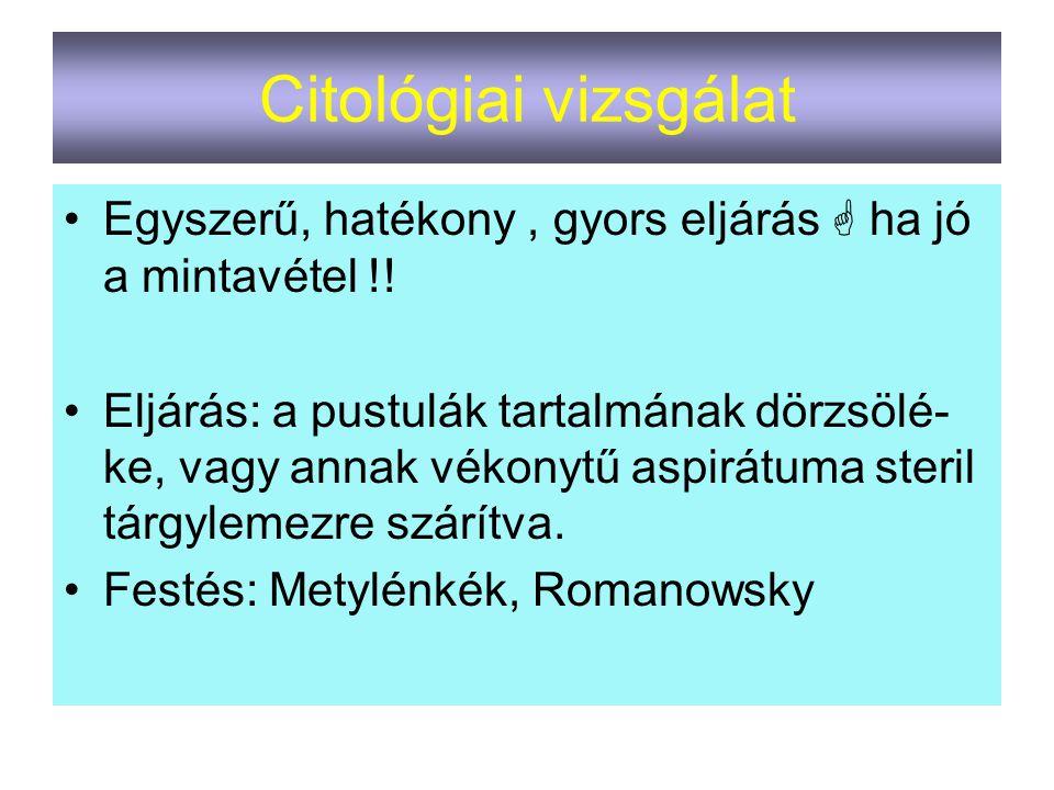 Citológiai vizsgálat Egyszerű, hatékony , gyors eljárás  ha jó a mintavétel !!