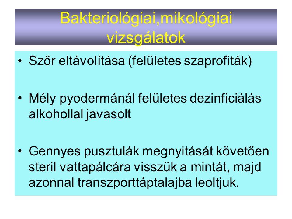 Bakteriológiai,mikológiai vizsgálatok