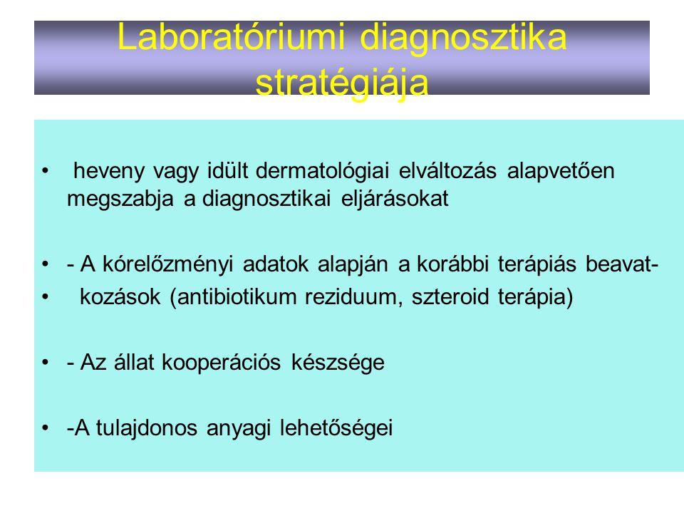 Laboratóriumi diagnosztika stratégiája