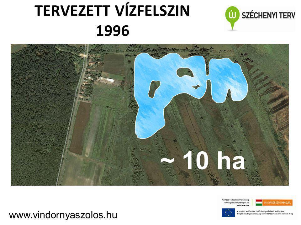TERVEZETT VÍZFELSZIN 1996 ~10 ha ~ 10 ha www.vindornyaszolos.hu