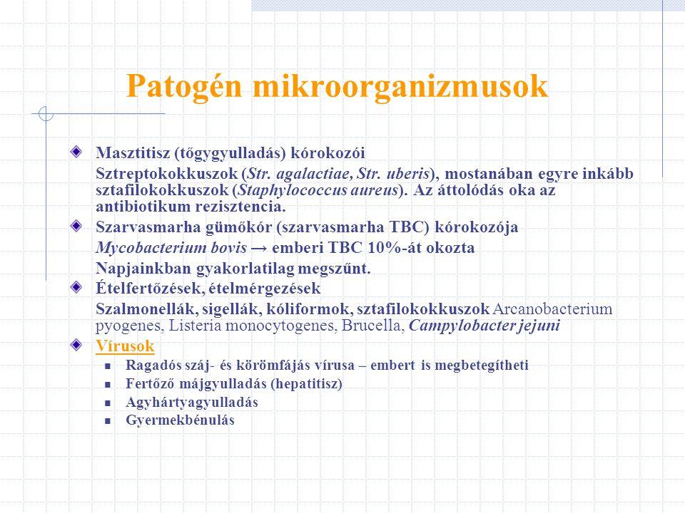 Patogén mikroorganizmusok