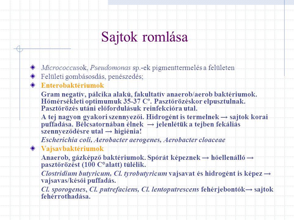 Sajtok romlása Micrococcusok, Pseudomonas sp.-ek pigmenttermelés a felületen. Felületi gombásosdás, penészedés;
