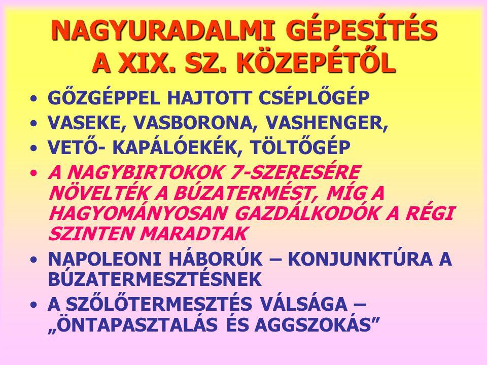 NAGYURADALMI GÉPESÍTÉS A XIX. SZ. KÖZEPÉTŐL
