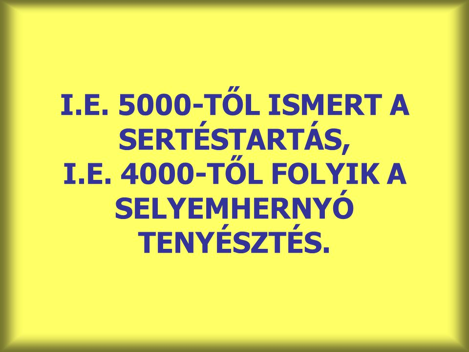 I. E. 5000-TŐL ISMERT A SERTÉSTARTÁS, I. E