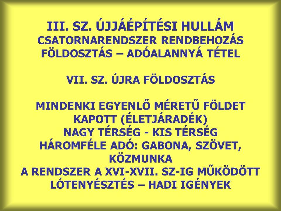 III. SZ. ÚJJÁÉPÍTÉSI HULLÁM CSATORNARENDSZER RENDBEHOZÁS FÖLDOSZTÁS – ADÓALANNYÁ TÉTEL VII.