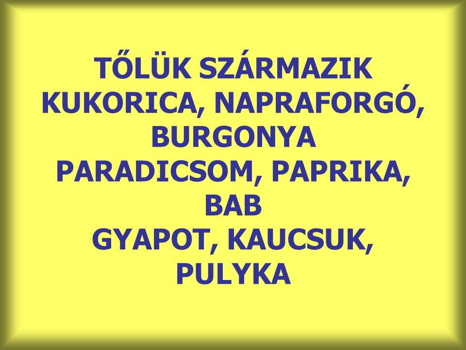 TŐLÜK SZÁRMAZIK KUKORICA, NAPRAFORGÓ, BURGONYA PARADICSOM, PAPRIKA, BAB GYAPOT, KAUCSUK, PULYKA