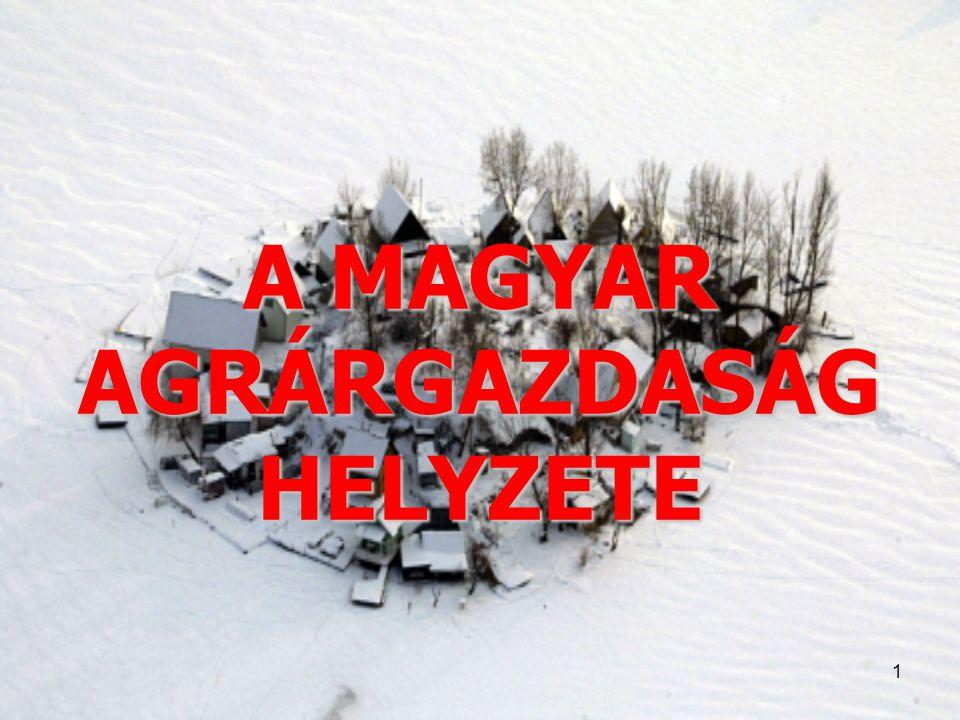 A MAGYAR AGRÁRGAZDASÁG HELYZETE