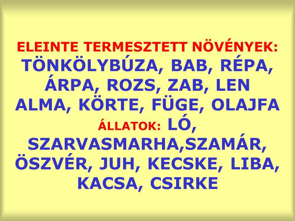 ELEINTE TERMESZTETT NÖVÉNYEK: TÖNKÖLYBÚZA, BAB, RÉPA, ÁRPA, ROZS, ZAB, LEN ALMA, KÖRTE, FÜGE, OLAJFA ÁLLATOK: LÓ, SZARVASMARHA,SZAMÁR, ÖSZVÉR, JUH, KECSKE, LIBA, KACSA, CSIRKE