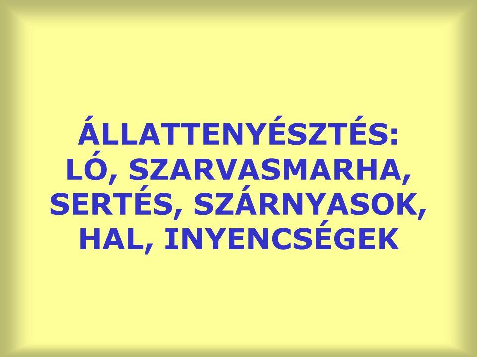 ÁLLATTENYÉSZTÉS: LÓ, SZARVASMARHA, SERTÉS, SZÁRNYASOK, HAL, INYENCSÉGEK