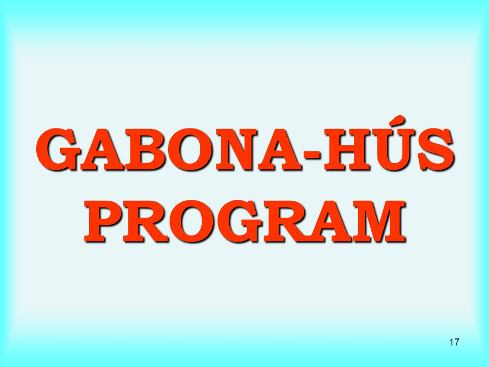 GABONA-HÚS PROGRAM