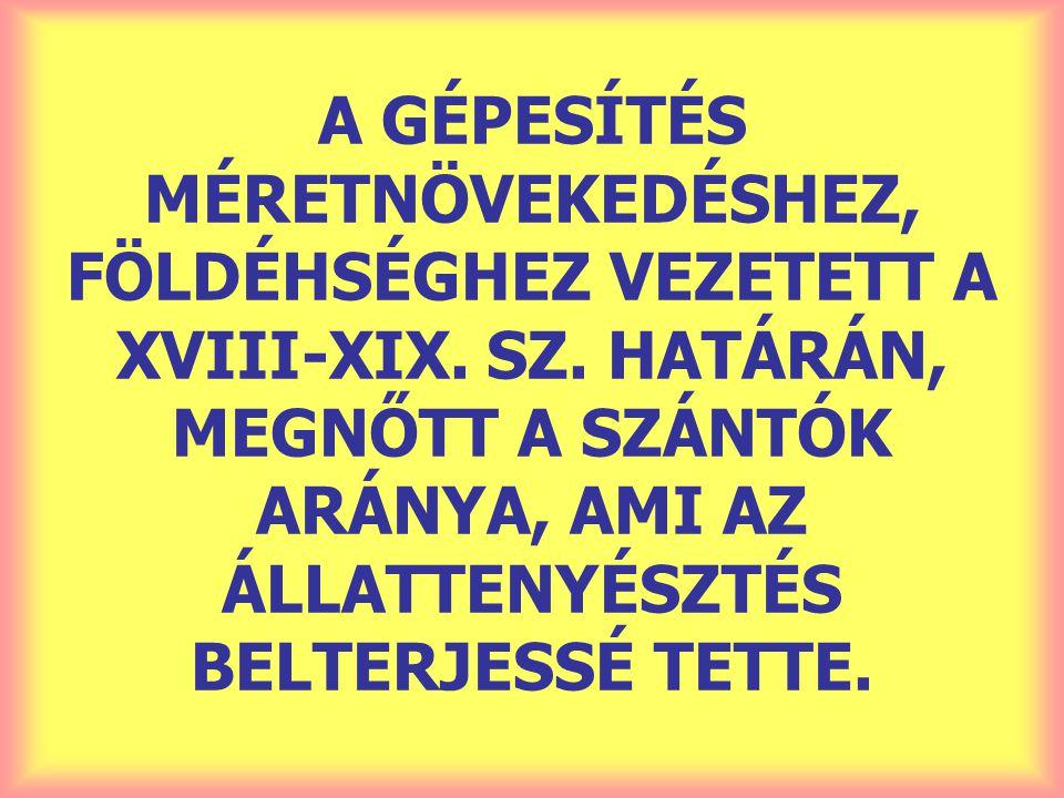 A GÉPESÍTÉS MÉRETNÖVEKEDÉSHEZ, FÖLDÉHSÉGHEZ VEZETETT A XVIII-XIX. SZ