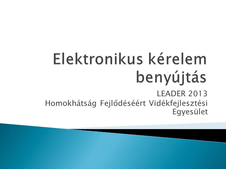 Elektronikus kérelem benyújtás