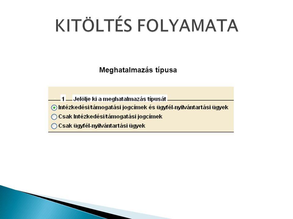 KITÖLTÉS FOLYAMATA Meghatalmazás típusa