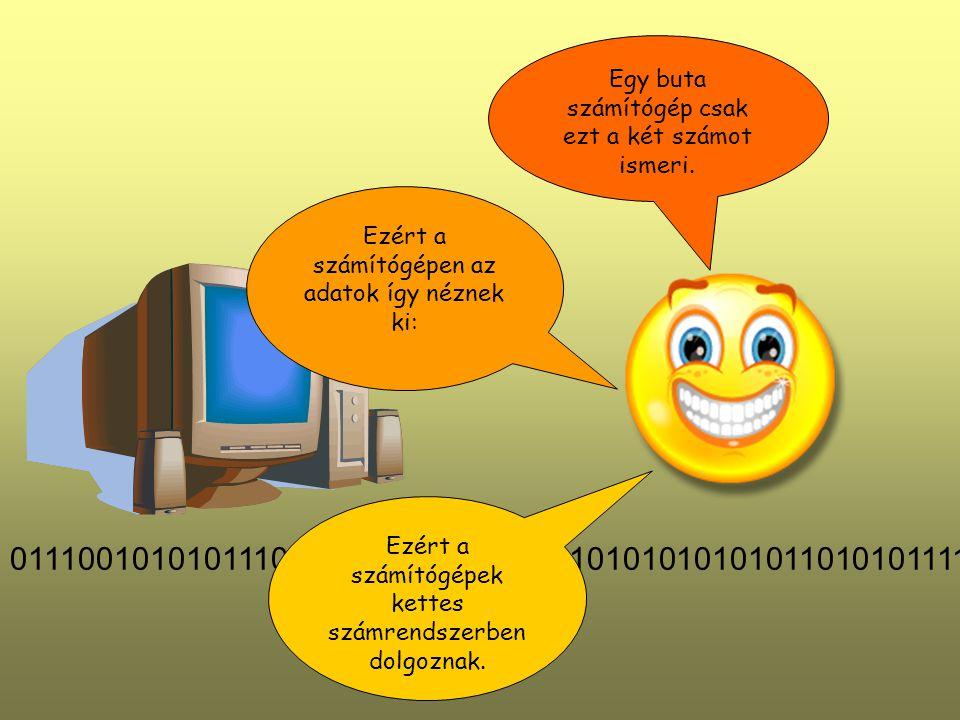 Egy buta számítógép csak ezt a két számot ismeri.