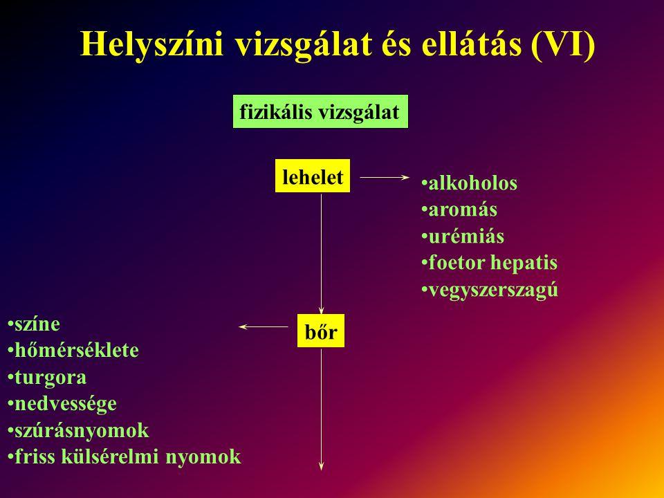 Helyszíni vizsgálat és ellátás (VI)