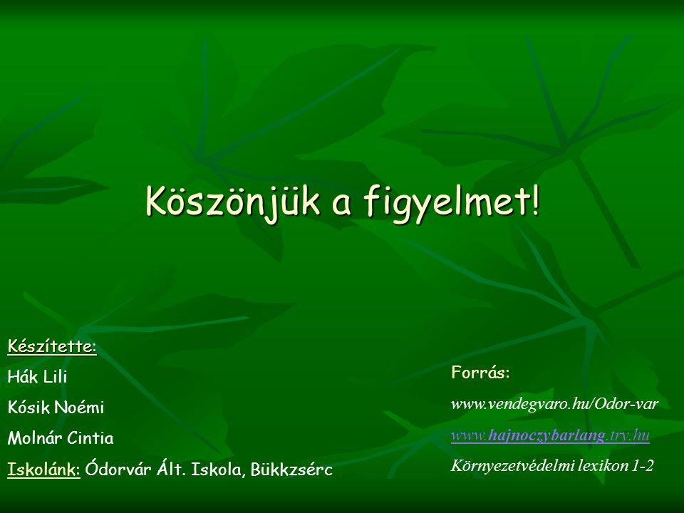 Köszönjük a figyelmet! Készítette: Hák Lili Kósik Noémi Forrás: