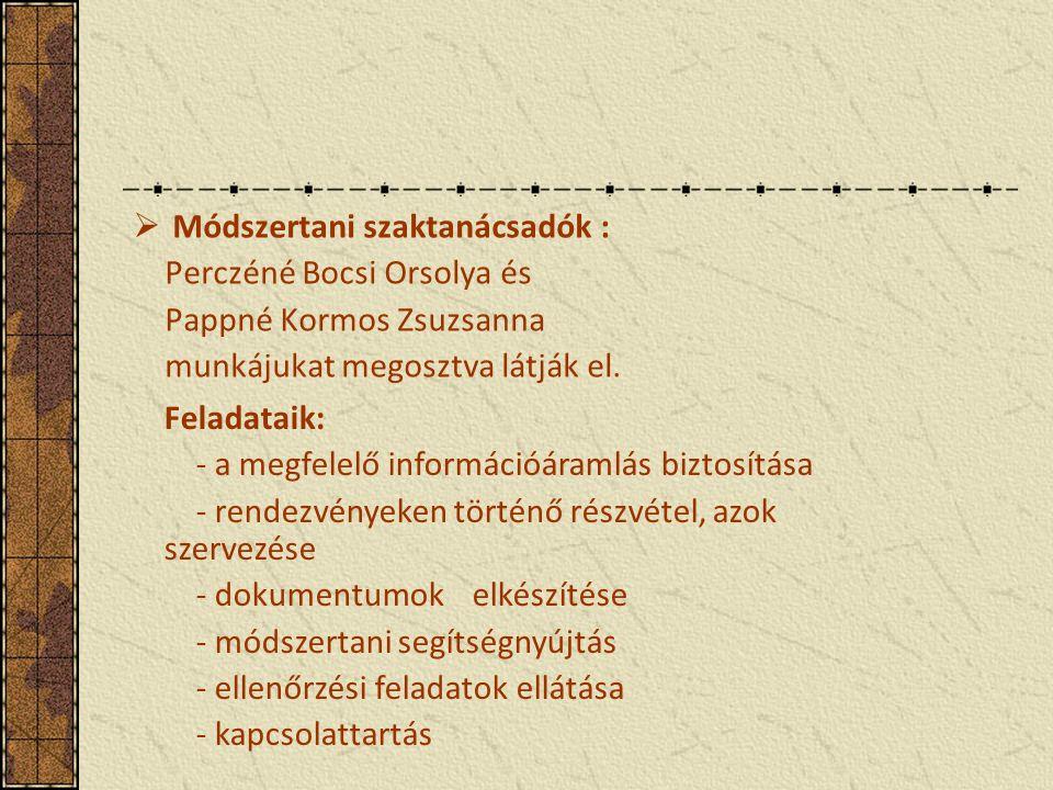 Módszertani szaktanácsadók :