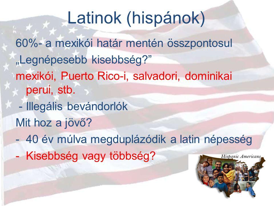 Latinok (hispánok) 60%- a mexikói határ mentén összpontosul