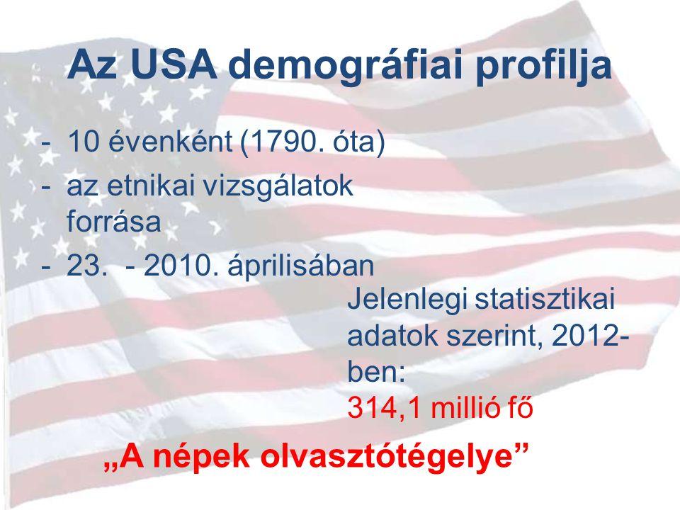 Az USA demográfiai profilja