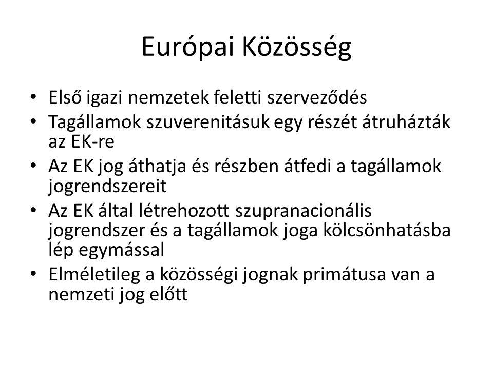 Európai Közösség Első igazi nemzetek feletti szerveződés