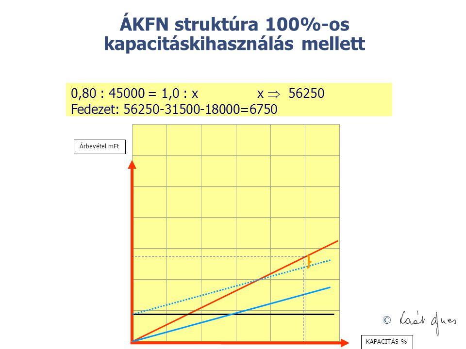 ÁKFN struktúra 100%-os kapacitáskihasználás mellett