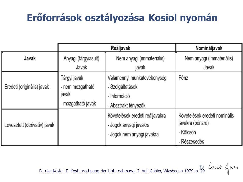 Erőforrások osztályozása Kosiol nyomán