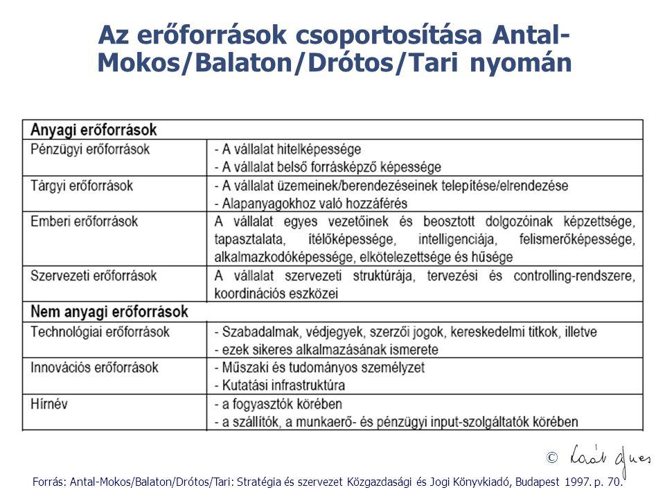 Az erőforrások csoportosítása Antal-Mokos/Balaton/Drótos/Tari nyomán