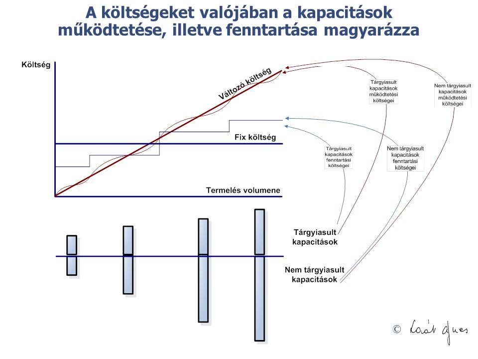A költségeket valójában a kapacitások működtetése, illetve fenntartása magyarázza