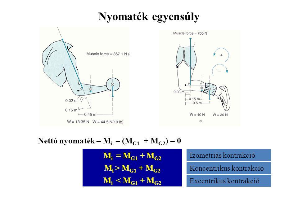 Nyomaték egyensúly Nettó nyomaték = Mi – (MG1 + MG2) = 0