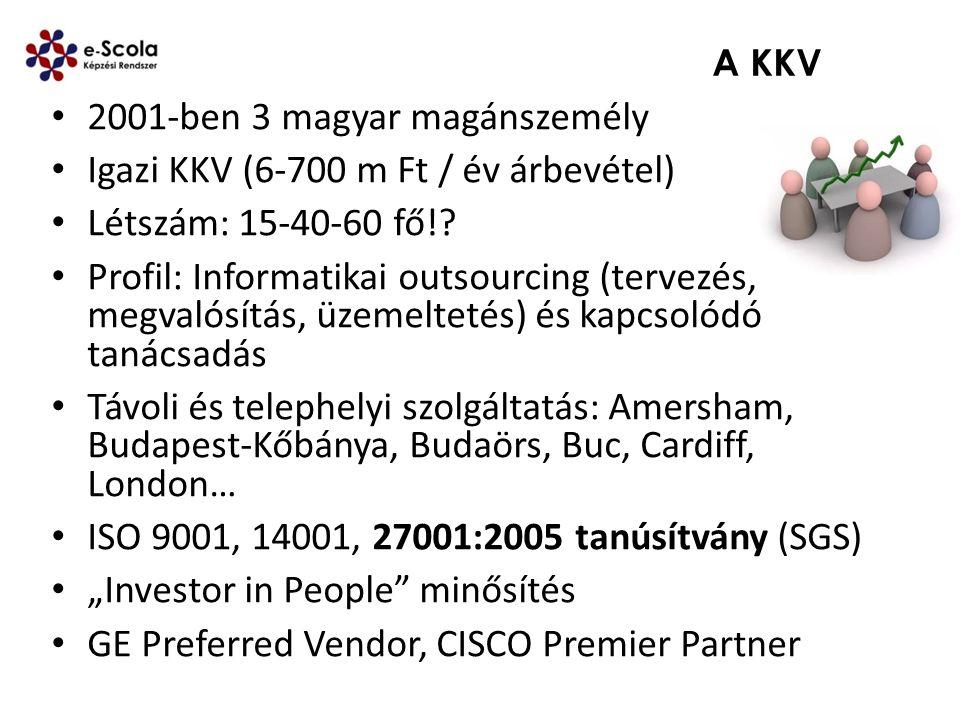 2001-ben 3 magyar magánszemély Igazi KKV (6-700 m Ft / év árbevétel)