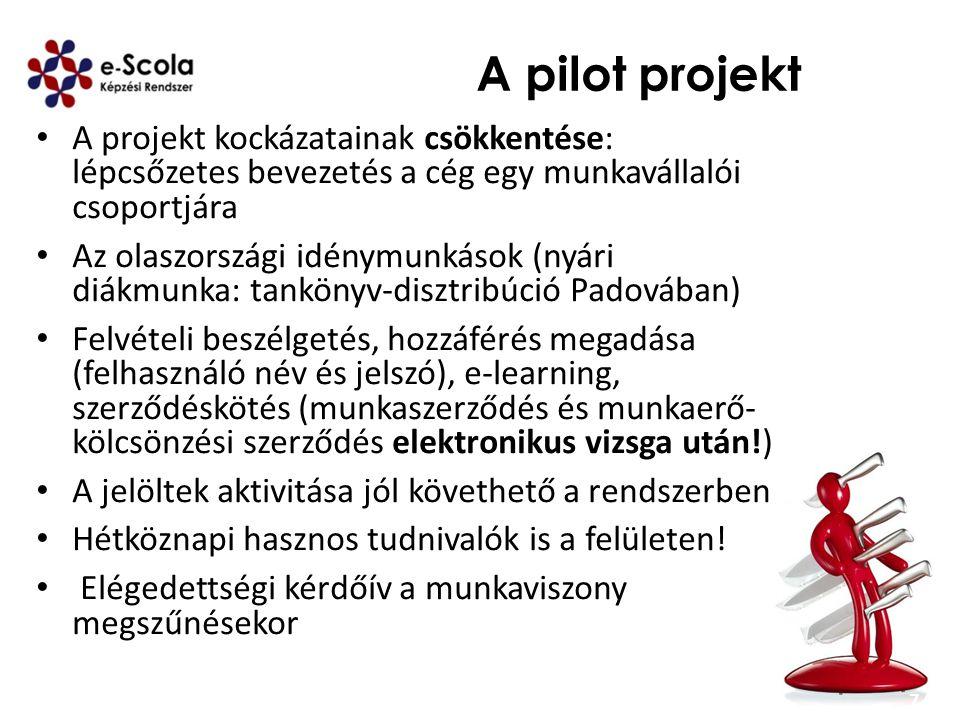 A pilot projekt A projekt kockázatainak csökkentése: lépcsőzetes bevezetés a cég egy munkavállalói csoportjára.