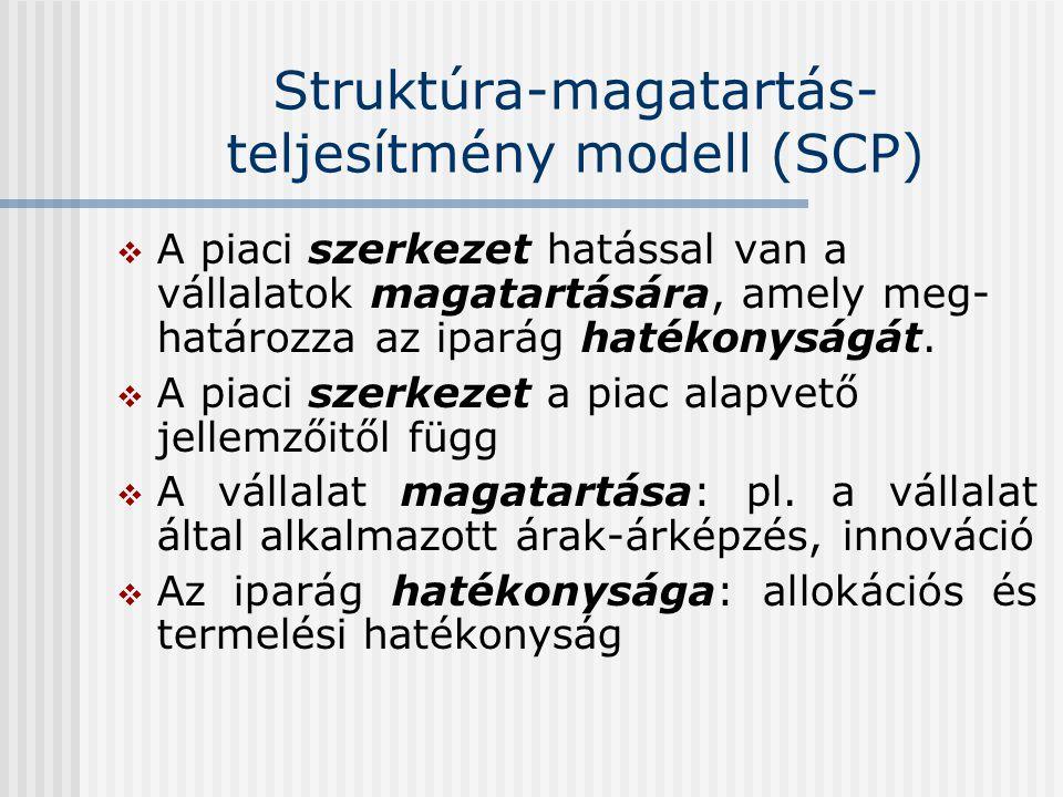 Struktúra-magatartás- teljesítmény modell (SCP)