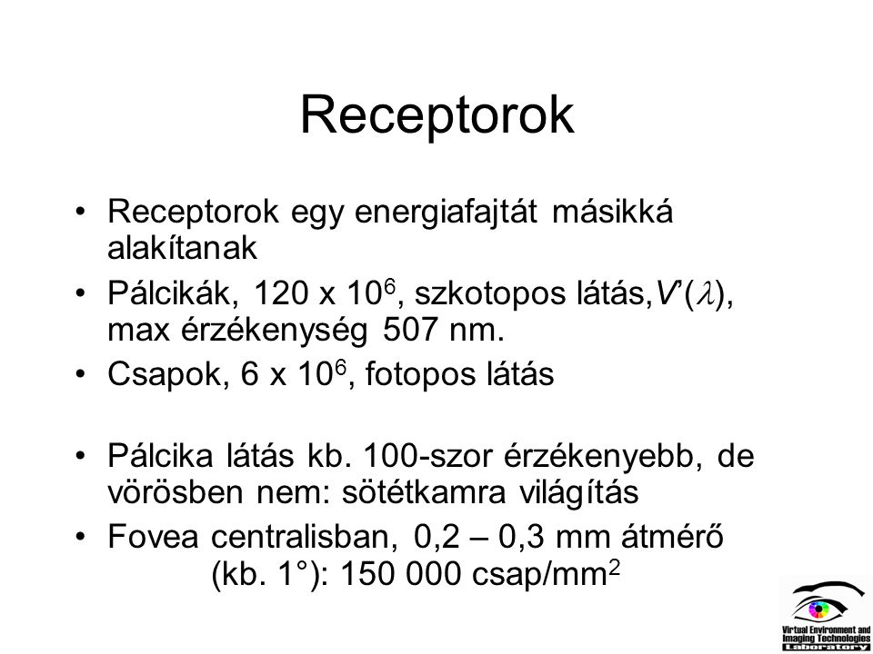 Receptorok Receptorok egy energiafajtát másikká alakítanak