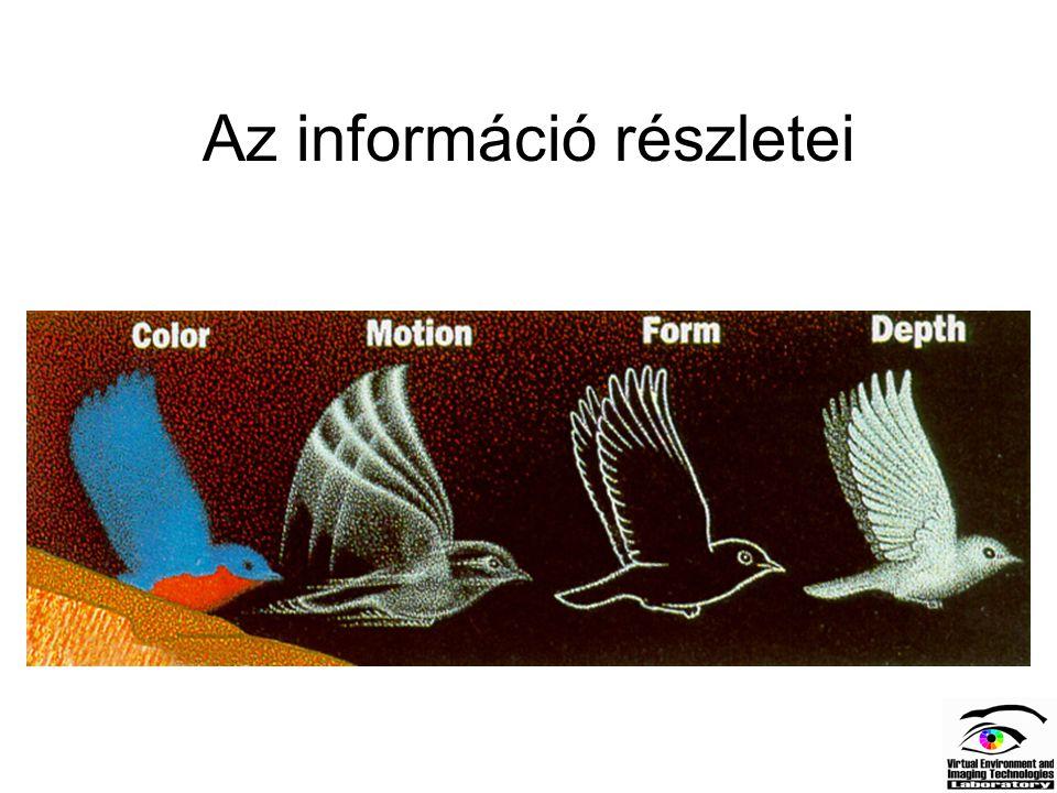 Az információ részletei