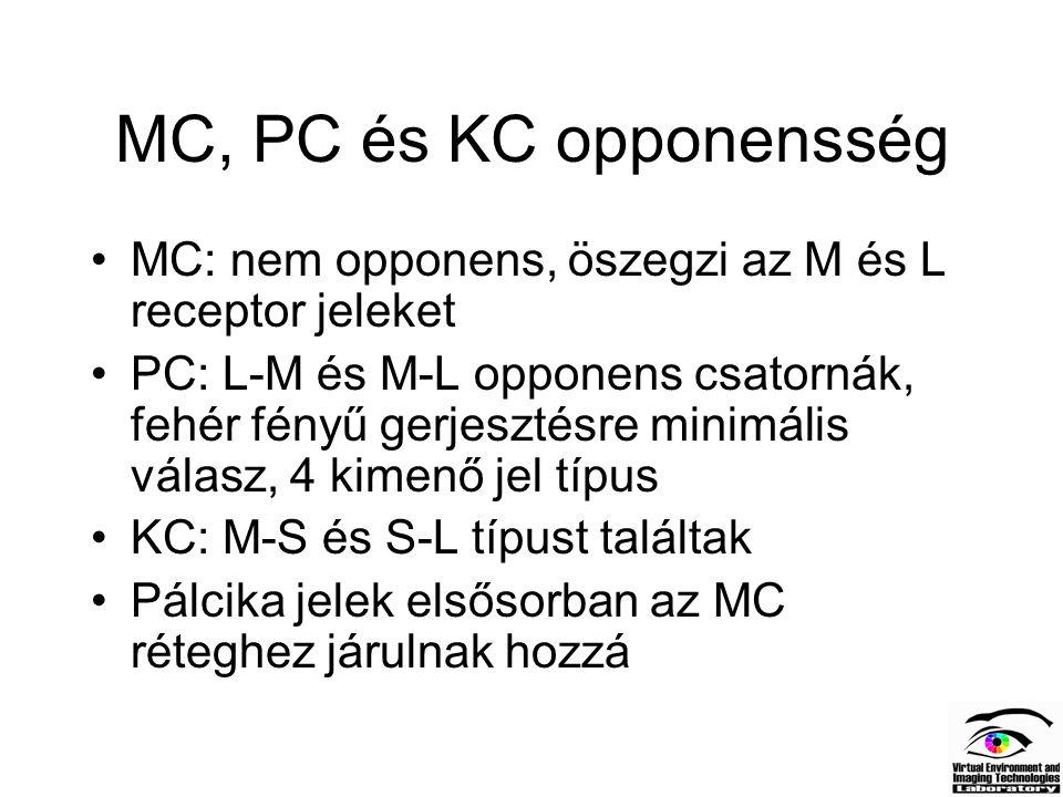 MC, PC és KC opponensség MC: nem opponens, öszegzi az M és L receptor jeleket.