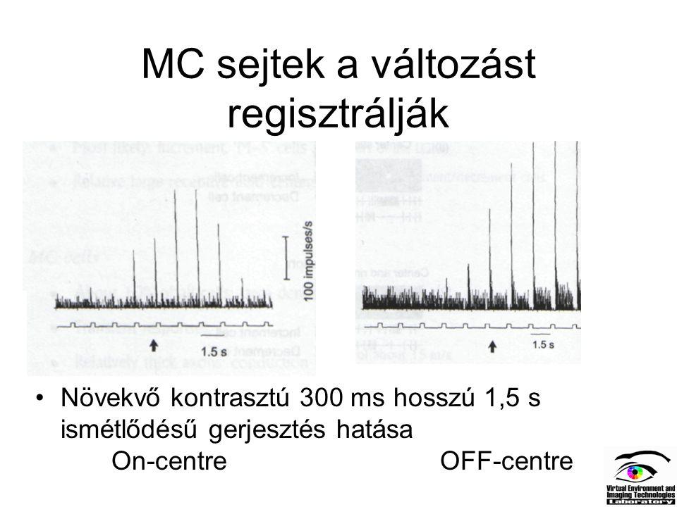 MC sejtek a változást regisztrálják