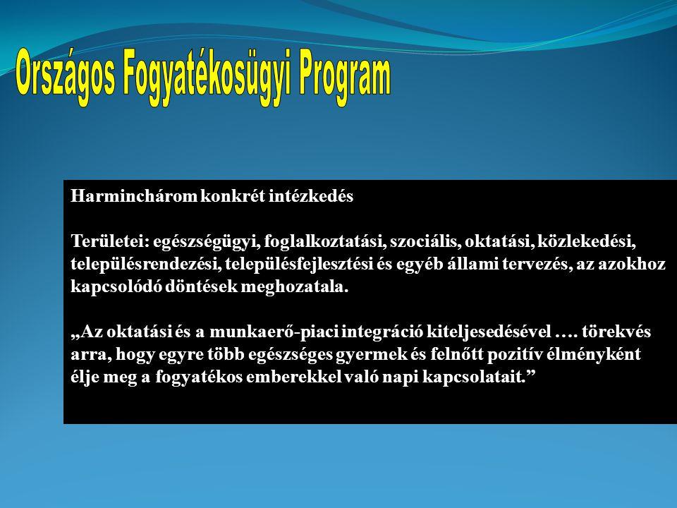 Országos Fogyatékosügyi Program