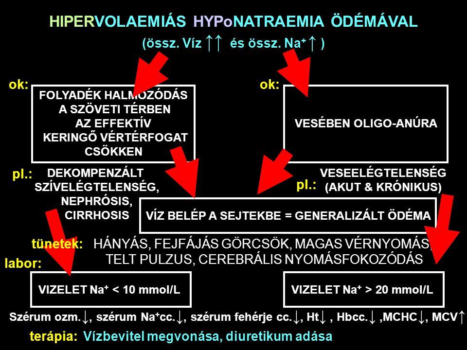 HIPERVOLAEMIÁS HYPoNATRAEMIA ÖDÉMÁVAL (össz. Víz ↑↑ és össz. Na+ ↑ )