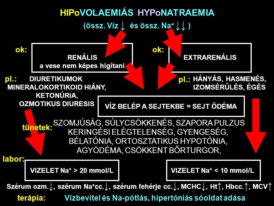 HIPoVOLAEMIÁS HYPoNATRAEMIA (össz. Víz ↓ és össz. Na+ ↓↓ )