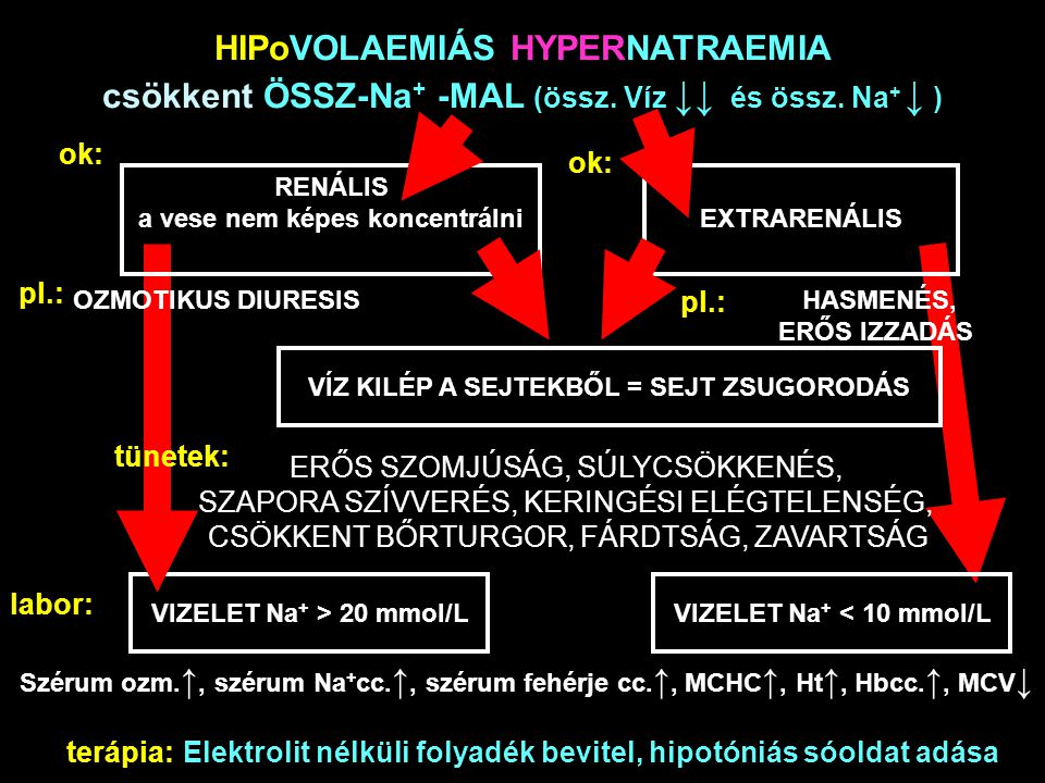 HIPoVOLAEMIÁS HYPERNATRAEMIA