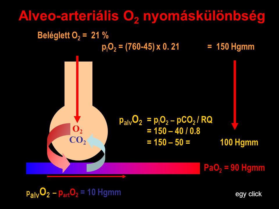 Alveo-arteriális O2 nyomáskülönbség
