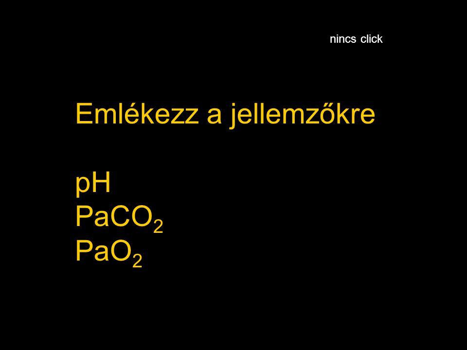 Emlékezz a jellemzőkre pH PaCO2 PaO2