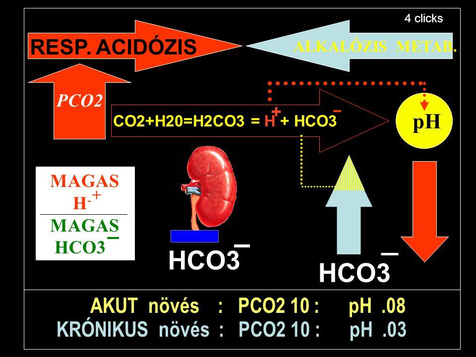 HCO3 HCO3 RESP. ACIDÓZIS pH AKUT növés : PCO2 10 : pH .08