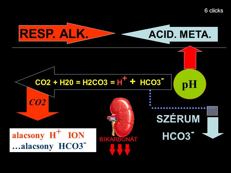 RESP. ALK. pH ACID. META. SZÉRUM HCO3- CO2