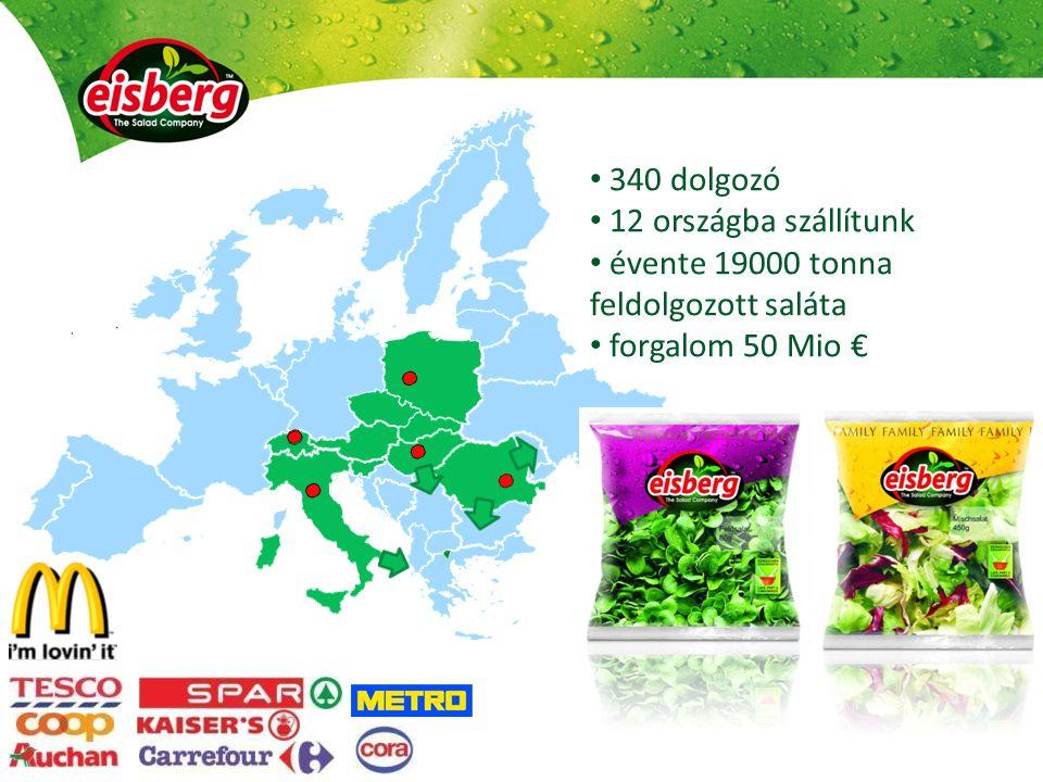 évente 19000 tonna feldolgozott saláta forgalom 50 Mio €
