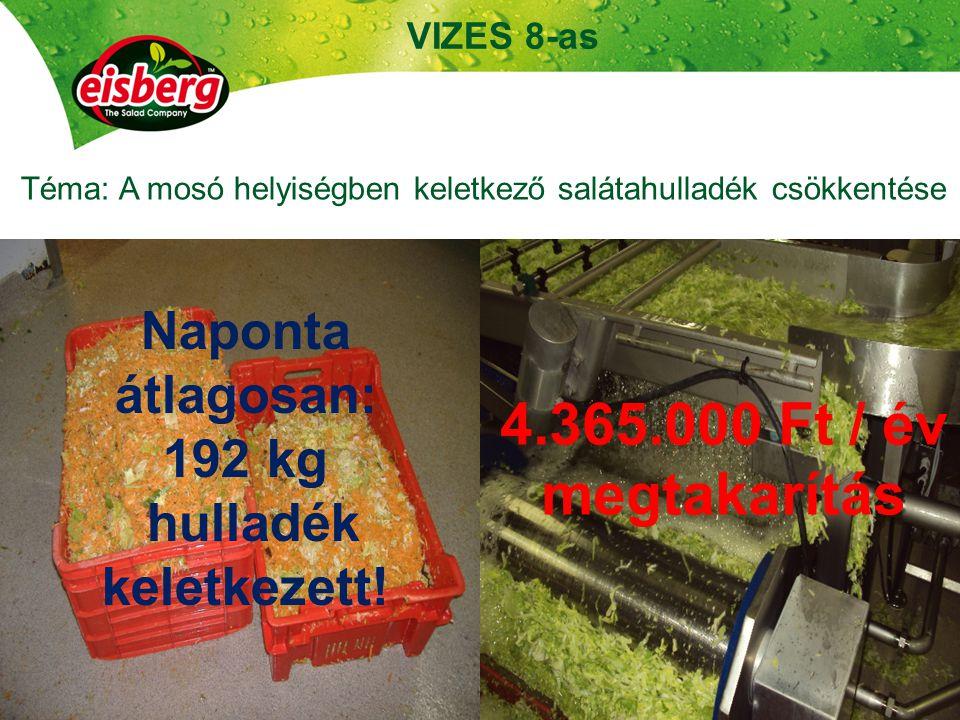 Téma: A mosó helyiségben keletkező salátahulladék csökkentése